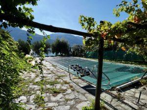 Luxury Villa Front Lake with Dock Pianello del Lario - garden